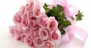Pink_flowers4
