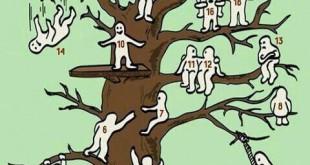 تست روانشناسی درخت