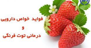 خواص توت فرنگی