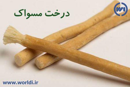 چوب مسواک