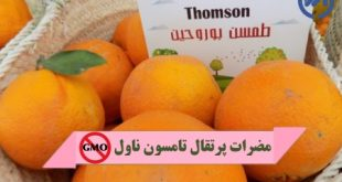 پرتقال تامسون ناول