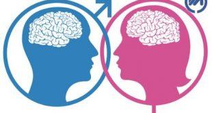 در مغز زنان چه می گذرد؟