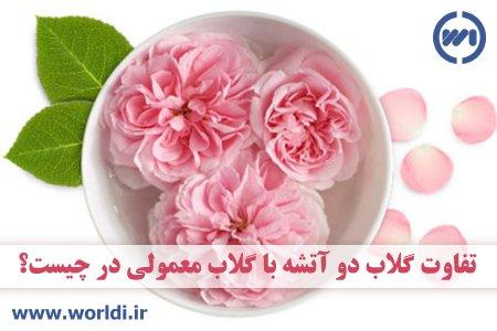 گلاب 2 آتشه